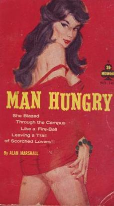 http://bookscans.com/Publishers/sleaze/images/Midwood147.jpg